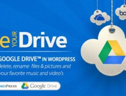 Use-your-Drive v1.5.3 – Google Drive plugin for WordPress
