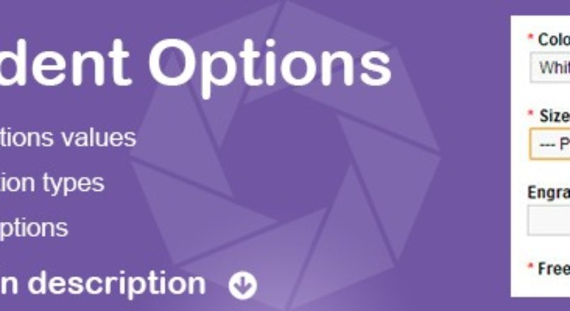 Conditional Options — Options Dependent on Another Option