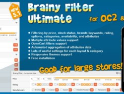 Brainy Filter Ultimate for OC3 RUS