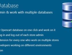 Switch Database — Управление базами
