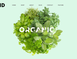 Orchid — HTML Template