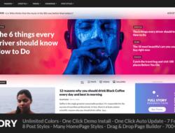 FullStory 1.9 – WordPress Theme for Blog Magazine Newspaper