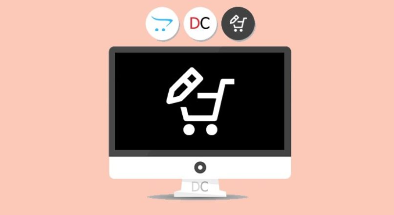 Edit product options in cart only VIP