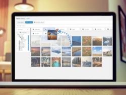 WP Media Folder v4.7.5 — менеджер файлов WordPress