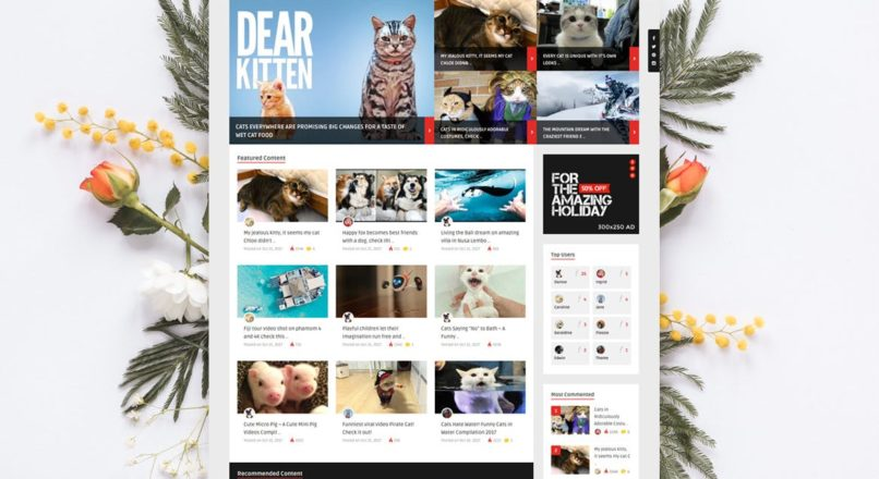 ViralVideo — User Membership News / Magazine Theme
