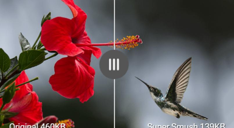 Smush Pro null 3.3.2 Оптимизируйте неограниченное количество изображений