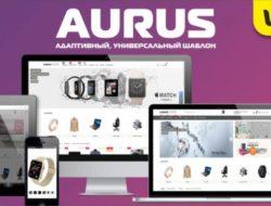Aurus адаптивный, универсальный шаблон 1.2.1 VIP