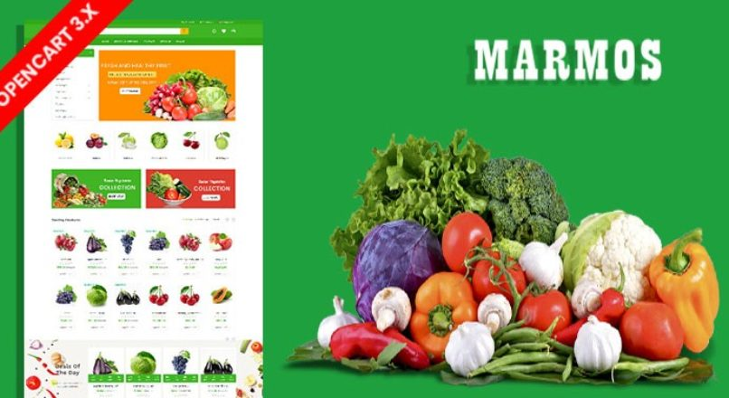 Marmos Organic & Grocery Ecommrce Website Template