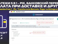 Платежи 5 в 1 — Pix, банковский перевод, оплата при доставке и другие — Pagamentos 5 em 1 — Pix, Transferência Bancária